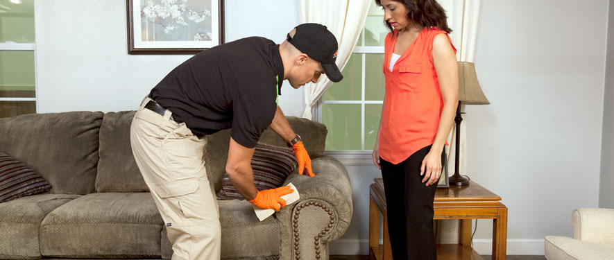 Decatur, AL carpet upholstery cleaning